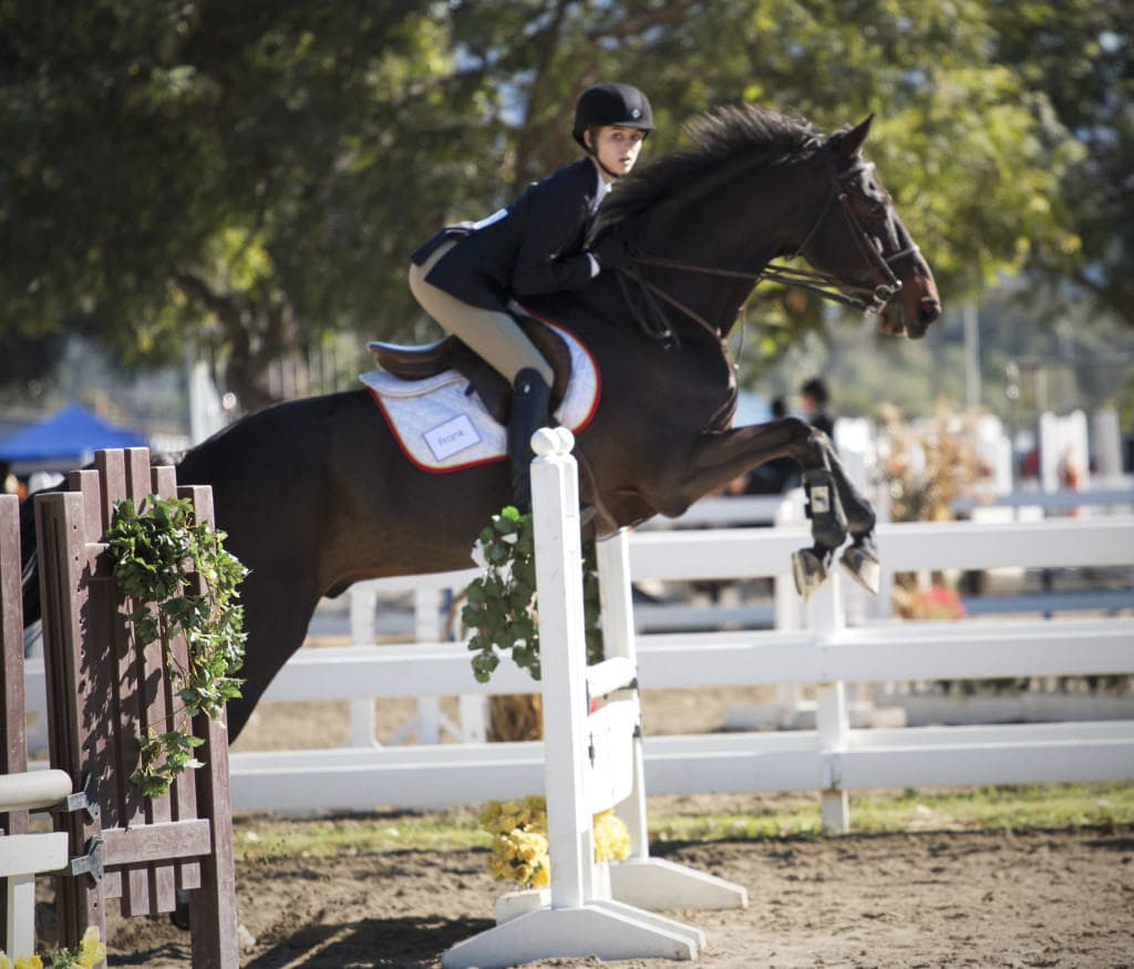UCSD Equestrian Team hosts a IHSA competition. Photo by Megan Lee/UCSD Guardian