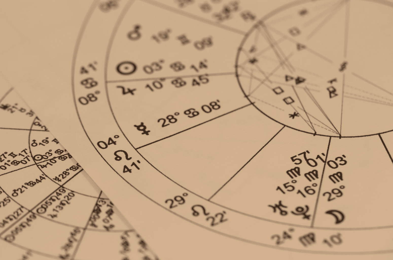 Astrology 101 Signs at Sun God